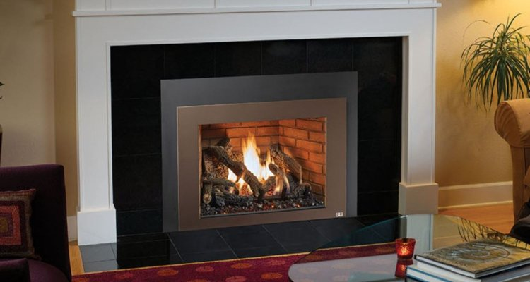 616 Deluxe Gas Fireplace Insert by FPX | Richshome.com